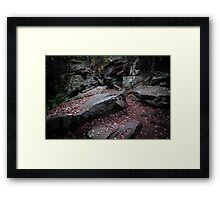 Ricketts Glen Number Fifteen Framed Print