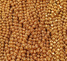 Gold Beads at the Otavalo Market by rhamm