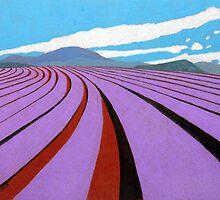 Lavender Quilt, Nabowla. by Richard Klekociuk