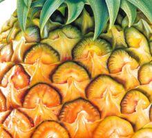 Pineapple Psych Sticker