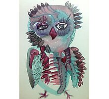 Emmet Owl Photographic Print