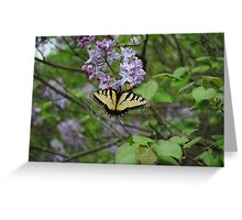 Monarch Butterfly on Lilac Greeting Card