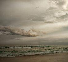 Burleigh Beach South by Murray Swift