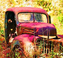 Rusty Ford Truck by Ruben Flanagan