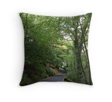 UK - Waterfall Road Throw Pillow