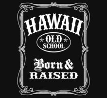 Hawaii Old School by robotface