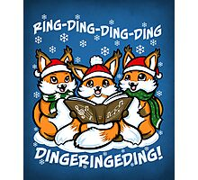 """""""What does the Fox Sing"""" Photographic Print"""