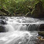 Upper Irrawong Reserve waterfall by Doug Cliff