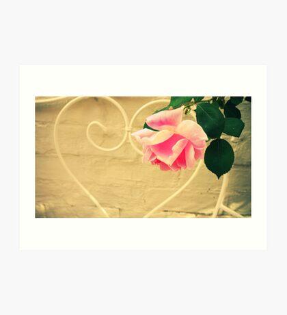 Pink Rose in Walled Garden Art Print