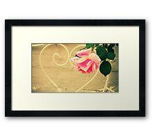 Pink Rose in Walled Garden Framed Print
