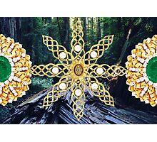 Green Forest Precious Gold  Photographic Print