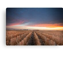 Afternoon ending Canvas Print