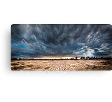 Death to many Canvas Print