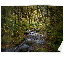 And There Was Peace ~ Brice Creek ~ Poster