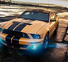 Mustang gt500E by dan  stewart