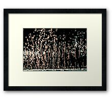 Macro Time Framed Print