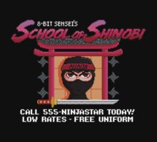 School of Shinobi by vgjunk
