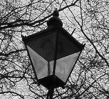 by the lamplight by thekatswhiskers