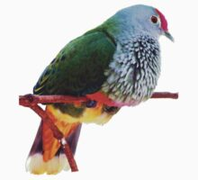 Rose-crowned fruit dove One Piece - Short Sleeve