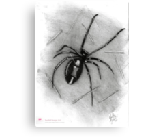 Sally - Spider Canvas Print