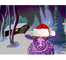 Pearl the Purple Cow waiting for Santa Photographic Print