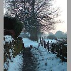 snow on the lane by thekatswhiskers