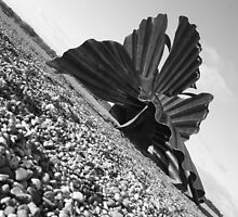 Aldeburgh Beach Benjamin Britten Scallop  by Merlin72