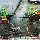 French Bicycle, Confolens by PaulineC
