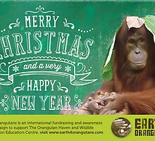 Earth 4 Orangutans Christmas Card by Earth 4 Orangutans E40