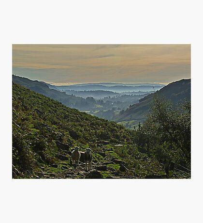 Langdale Morning Light Photographic Print