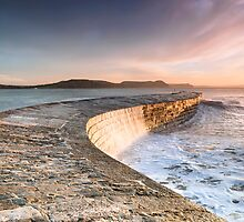 Sunkissed Cobb at Lyme Regis by Chris Frost Photography