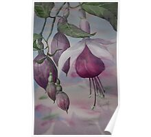 Watercolour: Fuchsia Buds Magenta Poster