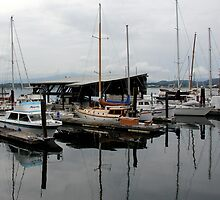 Cowichan Bay - Vancouver Island by Camilla