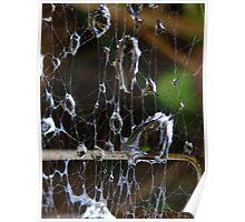 Liquid Web Poster