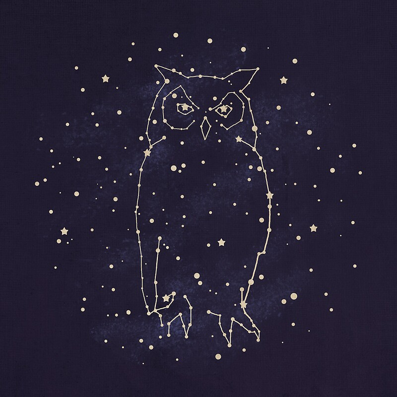 Owl constellation quot by terry fan redbubble