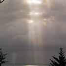 The sun beam by Elisabeth Dubois