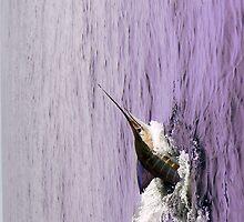 Marlin - Deep-sea series 3 by Elisabeth Dubois