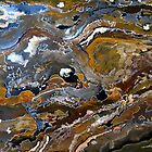 Abstract art: bark by Elizabeth Kendall