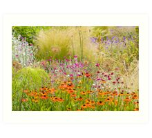 Heleniums and Lychnis Art Print