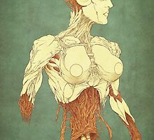 Biobot by anderton