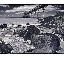 The pier at Clevedon by Tim Constable by Tim Constable