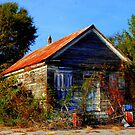 The forgotten store by JackieSmith
