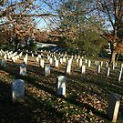 Autumn Shadows And Tombstones In Arlington by Cora Wandel