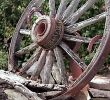 Wagon Wheel by Brenda Roy