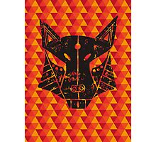 Lino Fox Photographic Print