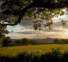 Glastonbury Tor from Pennard Hill by Nick Pound