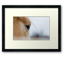 The Eye of the Horse Framed Print