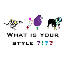 Dog style by LFandDESIGN