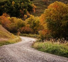 The Road through Autumn by Dorothy  Pinder