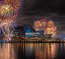 Sydney Fleet Review by CarleyBeth